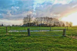 Jonge boerinnen gaan bloot tegen nieuwe stikstofregels